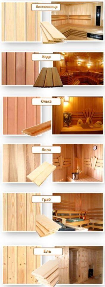 Виды разных пород дерева в интерьере парилки бани (обшивка вагонкой бани)